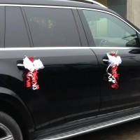Decorations for car mirrors and doors #01