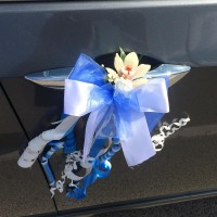 Decorations for car mirrors and doors #04