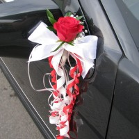 Decorations for car mirrors and doors #05
