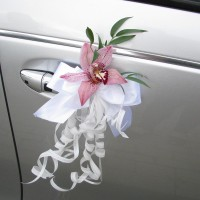 Decorations for car mirrors and doors #06