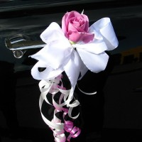 Decorations for car mirrors and doors #07